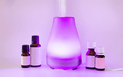 The Best Cool Mist Humidifier For Your Home