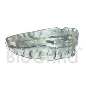 BioGrind (TM) Mouth Guard Review